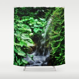 Dreamy Falls Shower Curtain