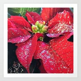 Christmas Holiday Red Poinsettias With Silver Hanukkah Sparkles Art Print