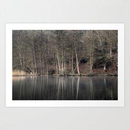 Winter at Cannop Ponds 2 Art Print