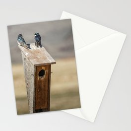 Two Tree Swallows Stationery Cards