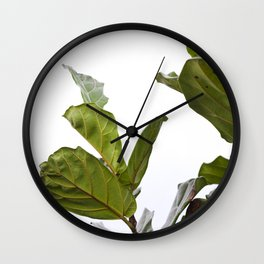 Fiddle Leaf Fig  |  The Houseplant Collection Wall Clock