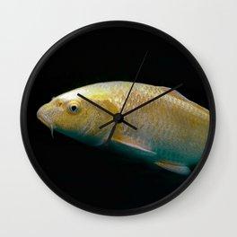A lucky golden colored carp/Nishikigoi(Japanese Colored Carp) Wall Clock