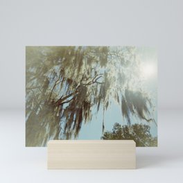 Spanish Moss of Savannah, Georgia in 35 mm - Film Photograph Mini Art Print