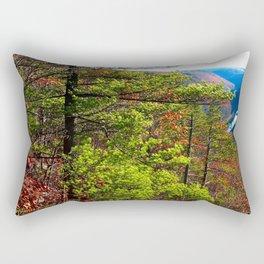 Pennsylvania Grand Canyon Rectangular Pillow