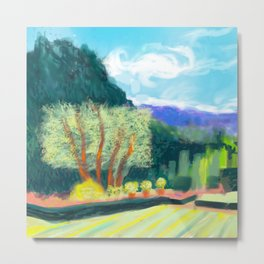 Filoli trees Metal Print