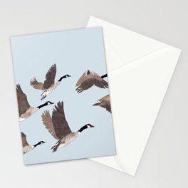 Flock of Canada geese Stationery Cards