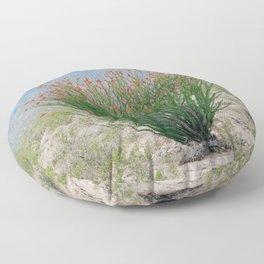 Ocotillo Plant (Anza Borrego Desert, California) Floor Pillow