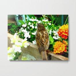 Birds Garden Patio Metal Print