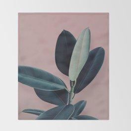 Ficus elastica - berry Throw Blanket