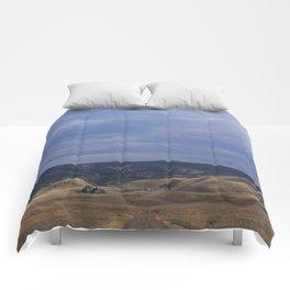 Black & Tan Comforters