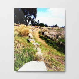 A Dirt Path Metal Print