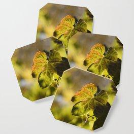 Autumn Grape Leaf Coaster