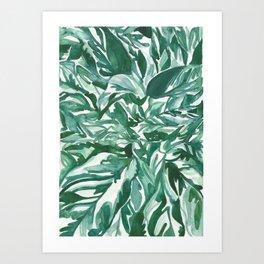 calathea leaves Art Print