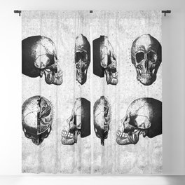 Vintage Medical Engravings of a Human Skull Blackout Curtain