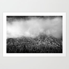 The Neverending Forest Art Print