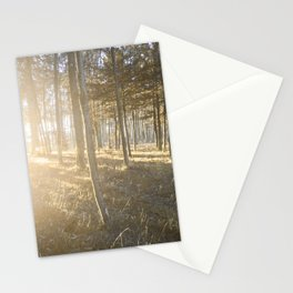 Falling, Rising, Shining Through Stationery Cards