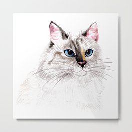 Beatiful Cat Metal Print