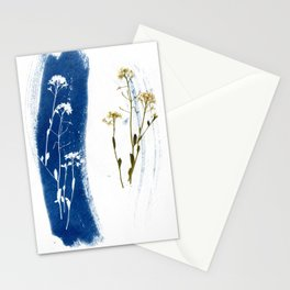 Solar Herbalism #3 Stationery Cards
