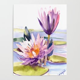 Water Lily,  Lotus, Asian Ink drawing Zen brush pink purple flower Poster