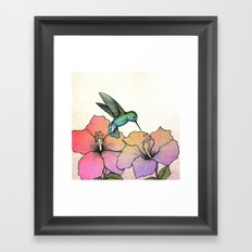 Hummingbird and Hibiscus Framed Art Print