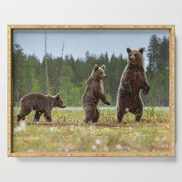 Three bears Serving Tray