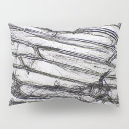 Wing of a Fly Pillow Sham