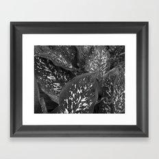 After The Rainfall II Framed Art Print
