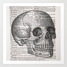 Latin Skull Art Print