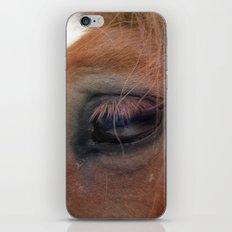 Horse healer iPhone & iPod Skin
