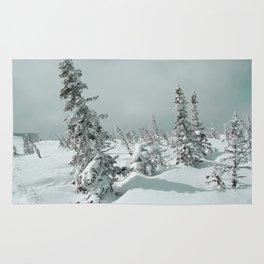 Winter 11 Rug