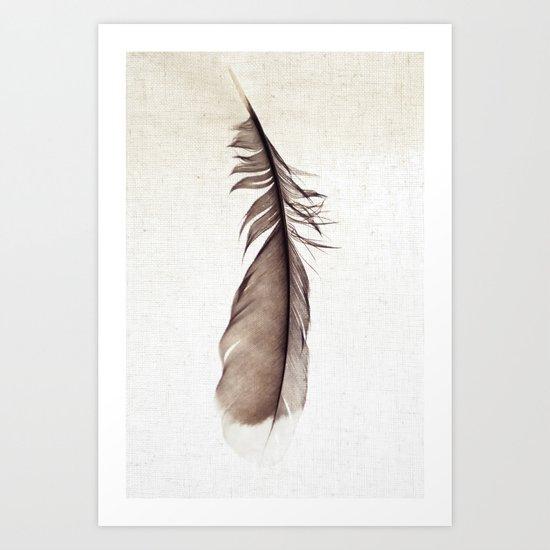 Feather Photograph: Ephemeral Art Print