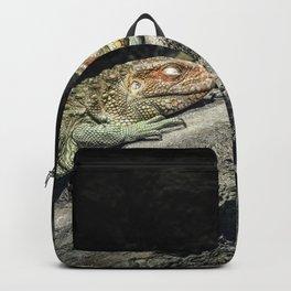 Dreaming Deep Backpack