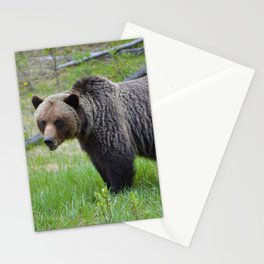 Grizzly encounter in Jasper National Park Stationery Cards