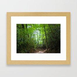 North Carolina Trees Framed Art Print