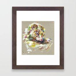 Ferret IV Framed Art Print
