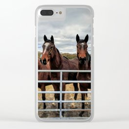 Shropshire Horses Greeting Clear iPhone Case
