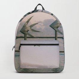 Cairns Woven Fish Sculpture (Group) | Cairns Australia Ocean Sunrise Travel Photography Backpack