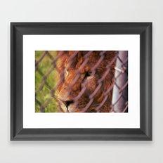 the imprisoned king Framed Art Print