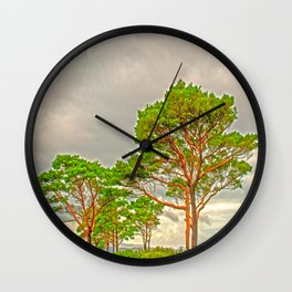 Magestic old Trees Wall Clock