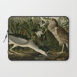 236 Night Heron or Qua bird Laptop Sleeve