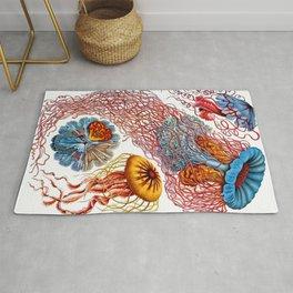 Ernst Haeckel Jellyfish Discomedusae Rug