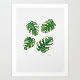 Monstera Leaves Art Print
