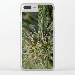 Cannabis Bud Clear iPhone Case