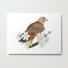 Sagittarius Hawk Metal Print