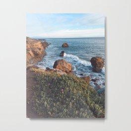 Santa Cruz Coast Metal Print