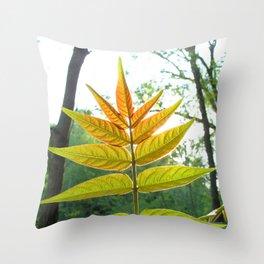 Watercolor Bush, Part, Staghorn Sumac 02, Eno River, North Carolina Throw Pillow