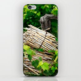 Grape vines iPhone Skin