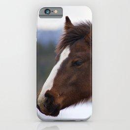Tri-Colored Horse iPhone Case