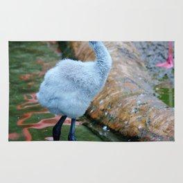 American Flamingo Chick Rug