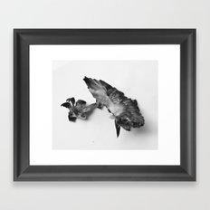 Strawberry Fields Forever II Framed Art Print